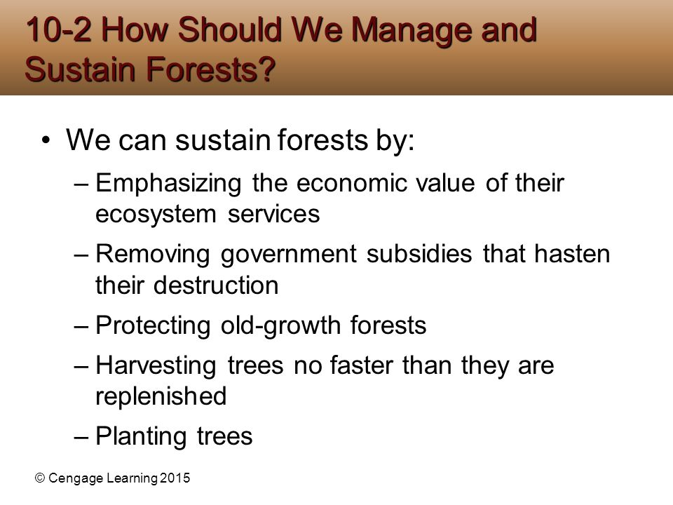 10-2 How Should We Manage and Sustain Forests