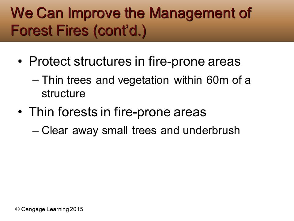 We Can Improve the Management of Forest Fires (cont'd.)