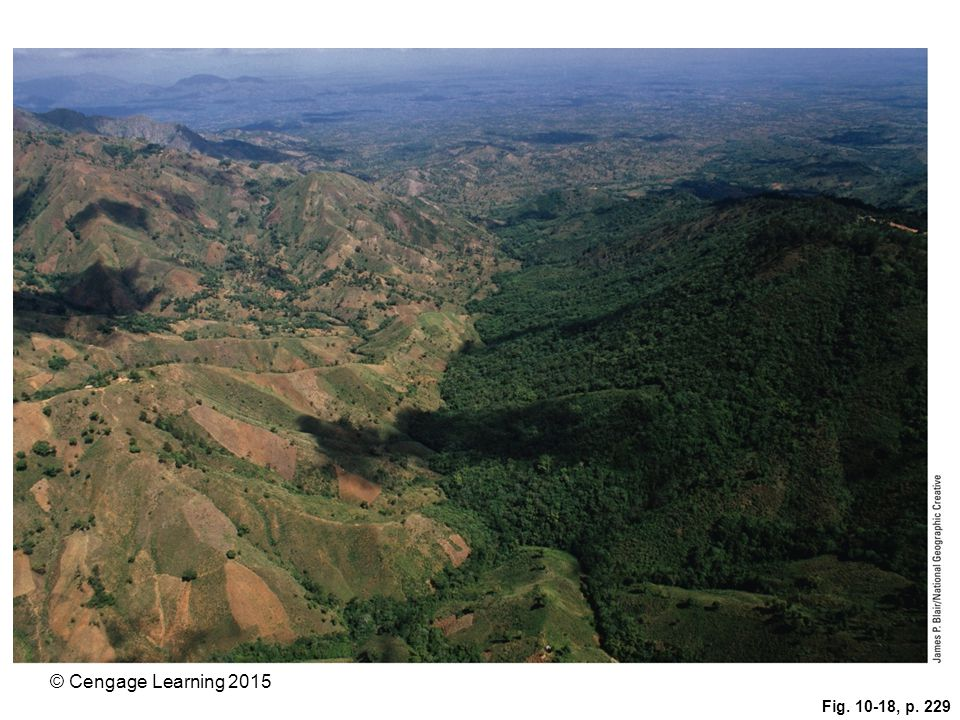 Figure 10-18: Natural capital degradation: Haiti's deforested brown landscape (left) contrasts sharply with the heavily forested green landscape of its neighboring country, the Dominican Republic.