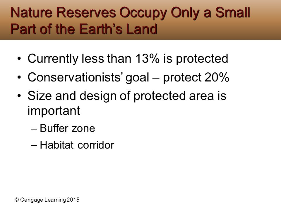 Nature Reserves Occupy Only a Small Part of the Earth's Land