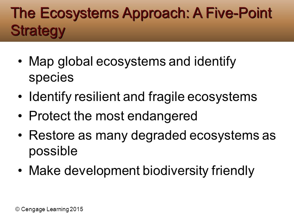 The Ecosystems Approach: A Five-Point Strategy