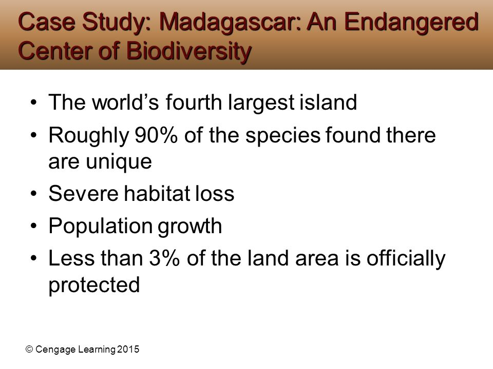 Case Study: Madagascar: An Endangered Center of Biodiversity