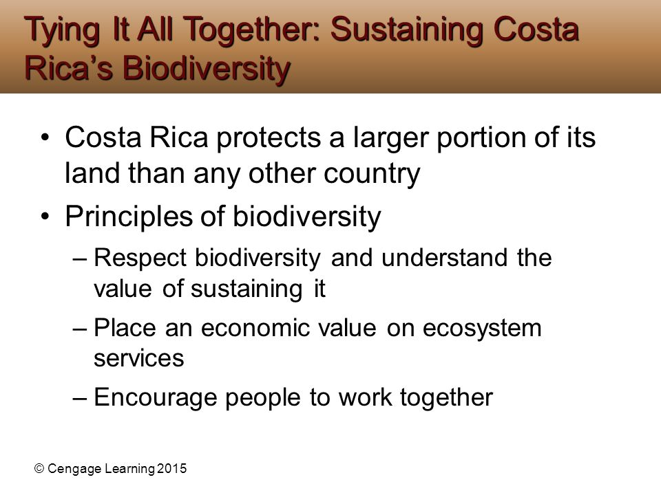 Tying It All Together: Sustaining Costa Rica's Biodiversity