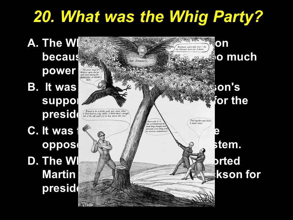 20. What was the Whig Party The Whigs were opposed Jackson because he had concentrated too much power in the presidency.