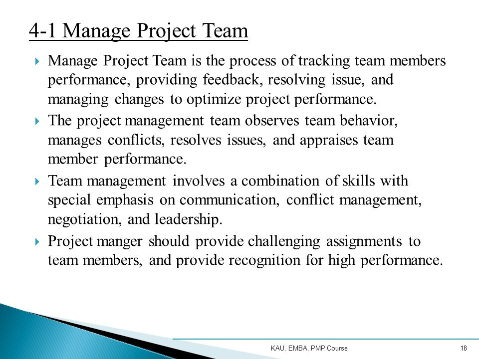 4-1 Manage Project Team