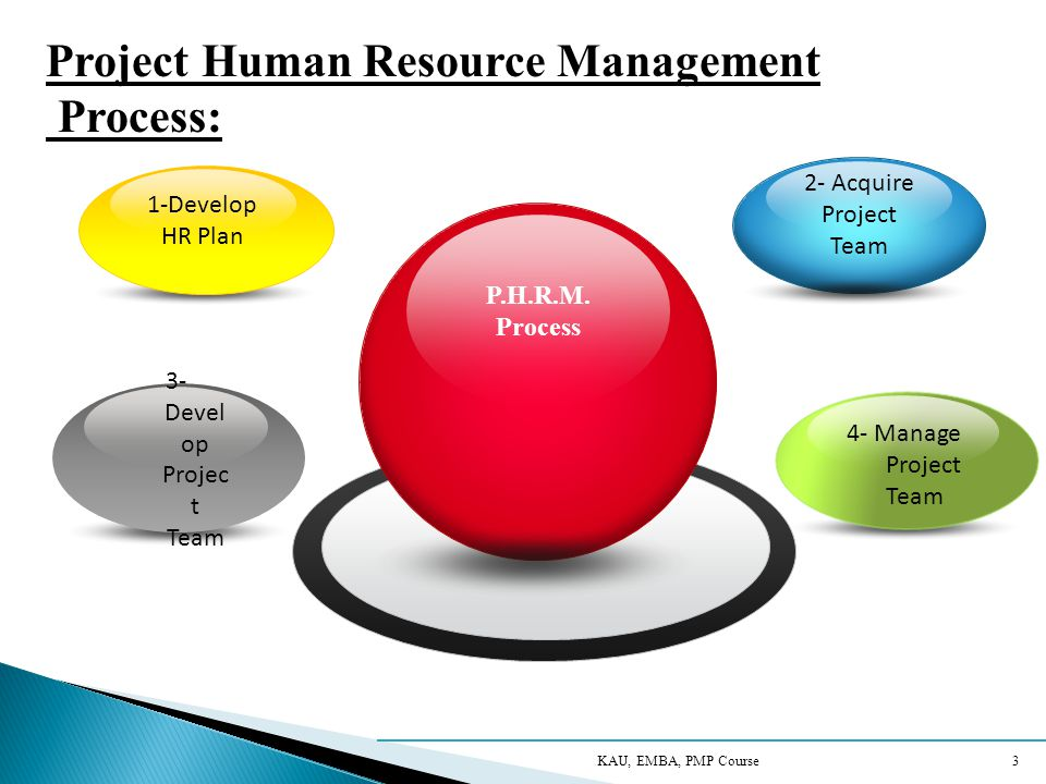 Project Human Resource Management Process: