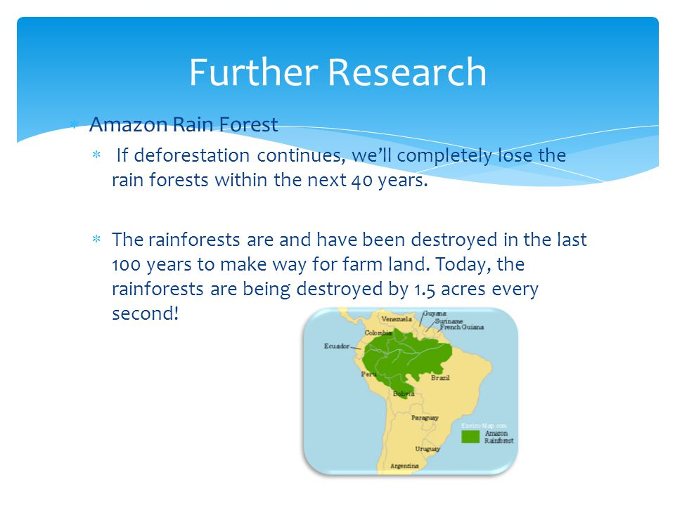 Further Research Amazon Rain Forest