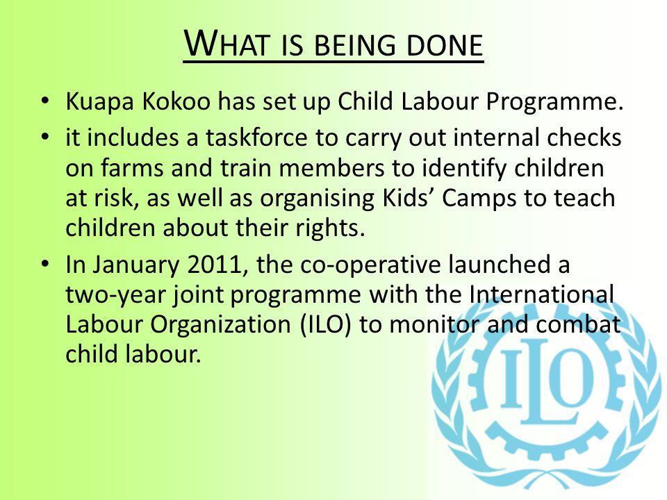 What is being done Kuapa Kokoo has set up Child Labour Programme.