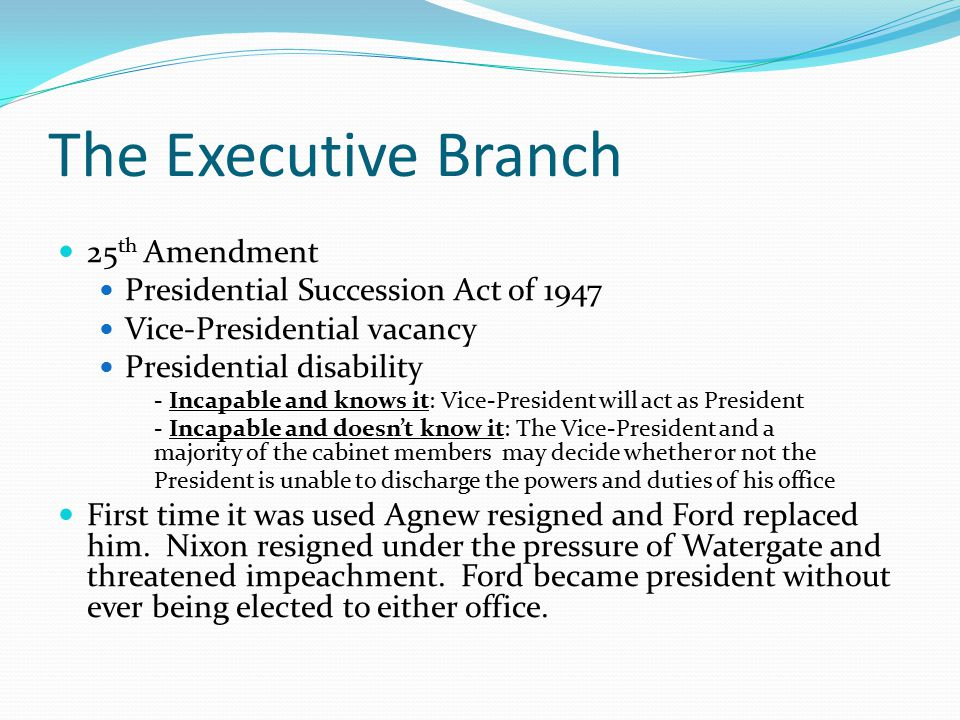 The Executive Branch 25th Amendment