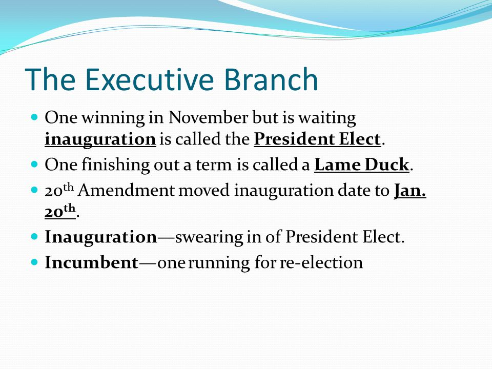 The Executive Branch One winning in November but is waiting inauguration is called the President Elect.
