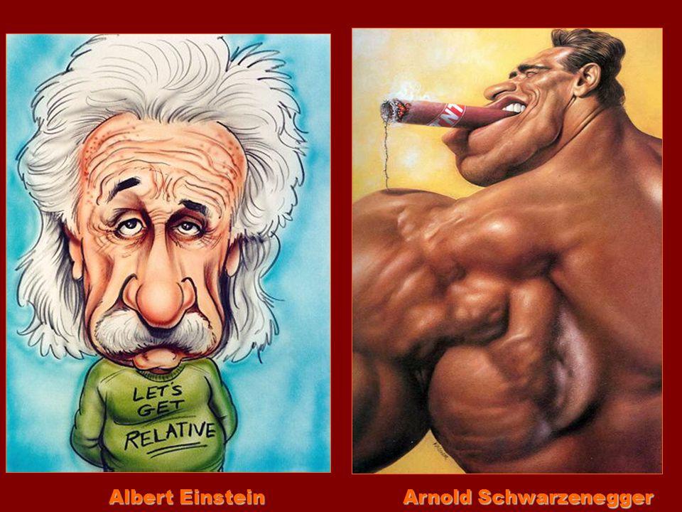 Albert Einstein Arnold Schwarzenegger