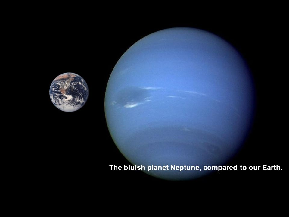 The bluish planet Neptune, compared to our Earth.