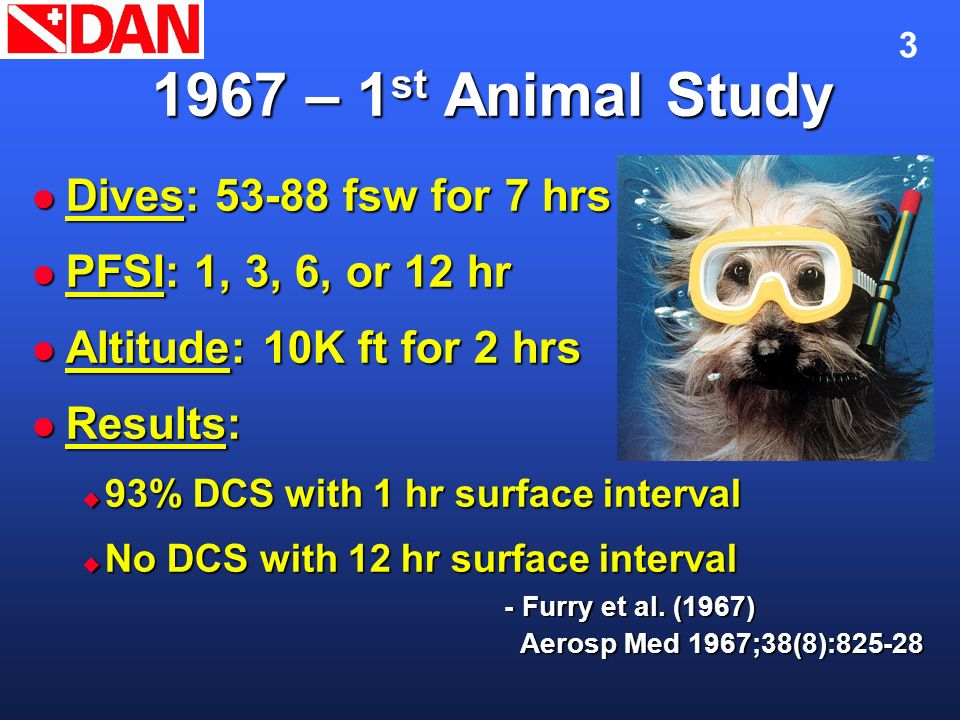 1967 – 1st Animal Study Dives: 53-88 fsw for 7 hrs