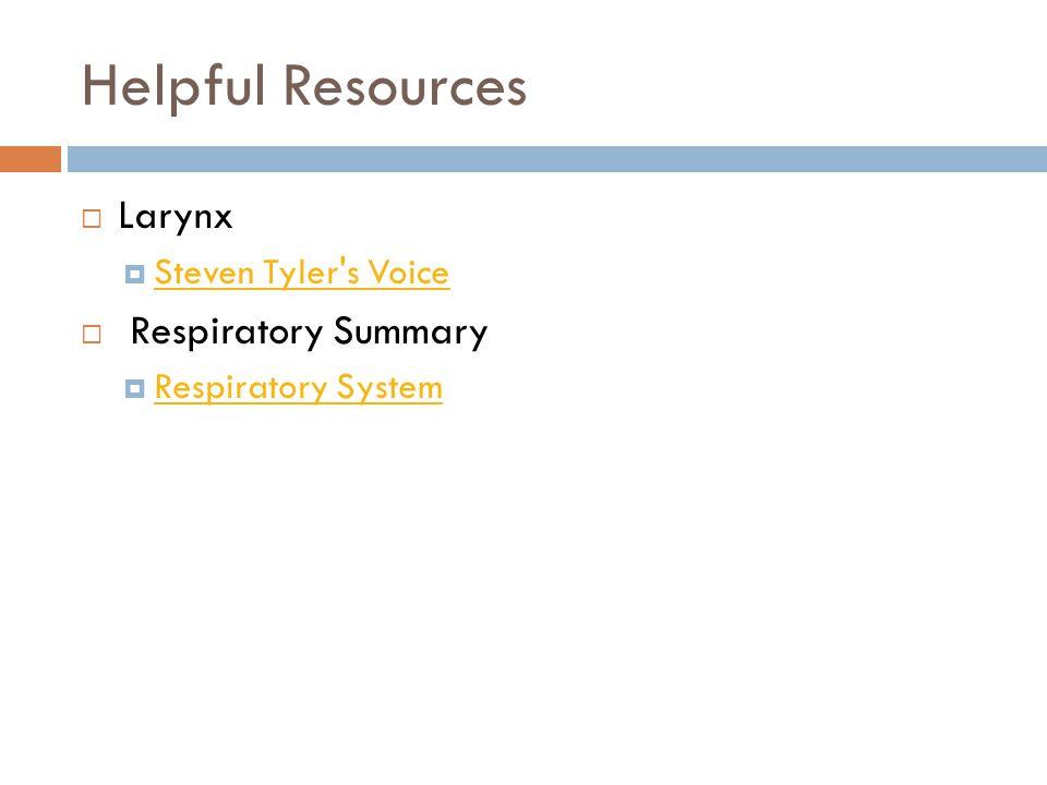 Helpful Resources Larynx Respiratory Summary Steven Tyler s Voice