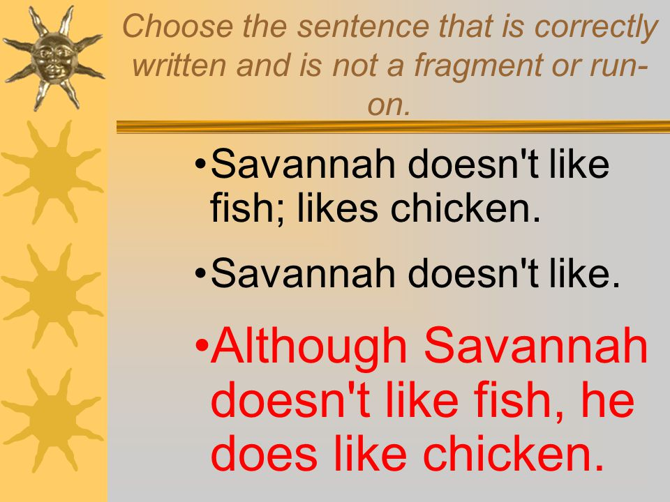 Although Savannah doesn t like fish, he does like chicken.