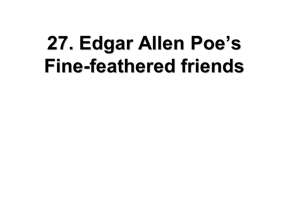 27. Edgar Allen Poe's Fine-feathered friends