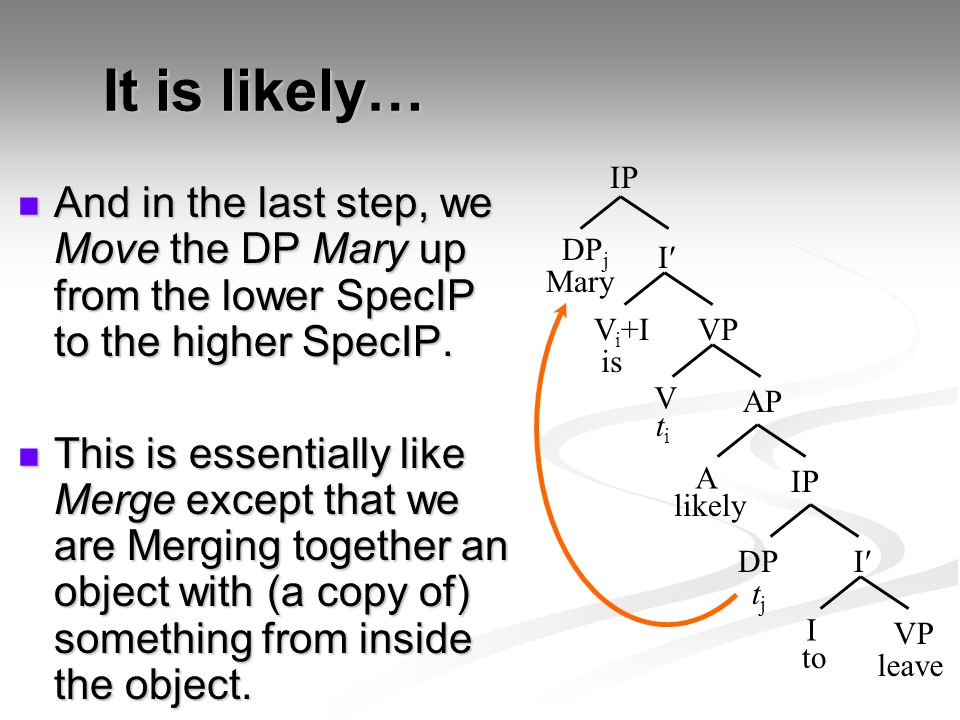 It is likely… IP. And in the last step, we Move the DP Mary up from the lower SpecIP to the higher SpecIP.