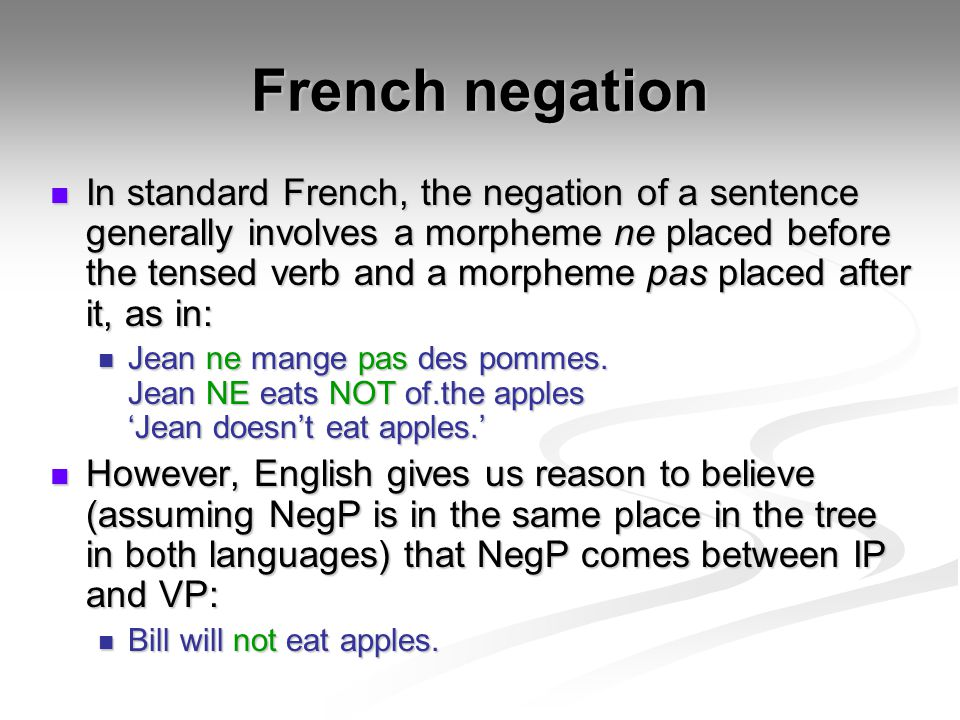 French negation
