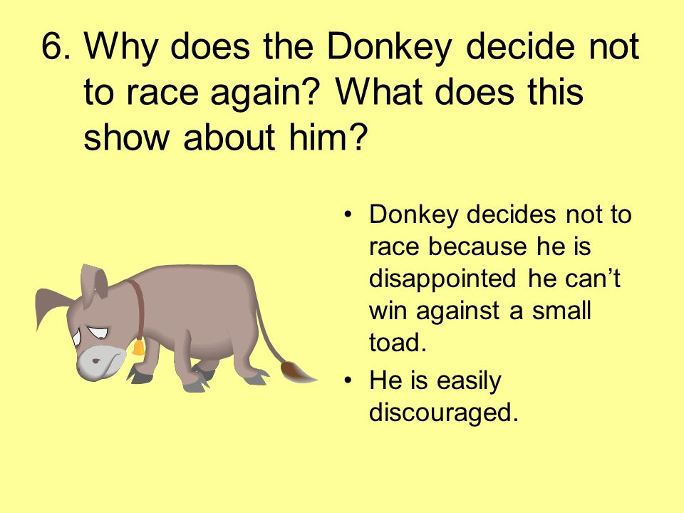 6. Why does the Donkey decide not to race again