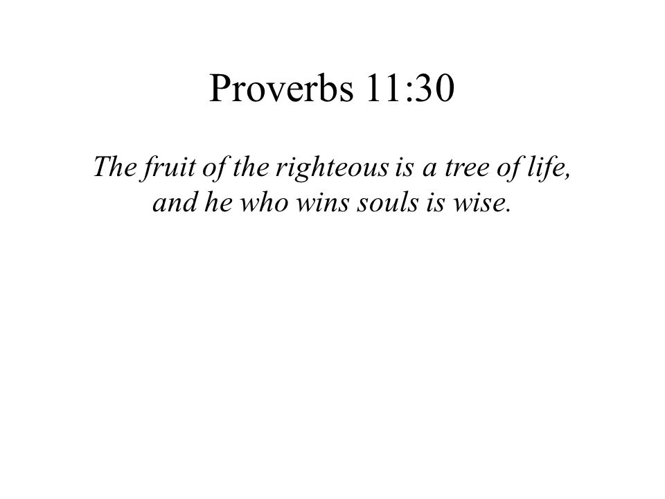Proverbs 11:30 The fruit of the righteous is a tree of life,