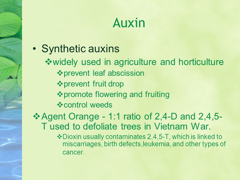 Auxin Synthetic auxins widely used in agriculture and horticulture