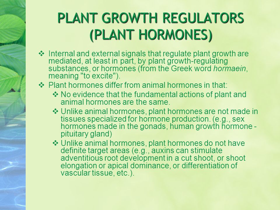 PLANT GROWTH REGULATORS (PLANT HORMONES)