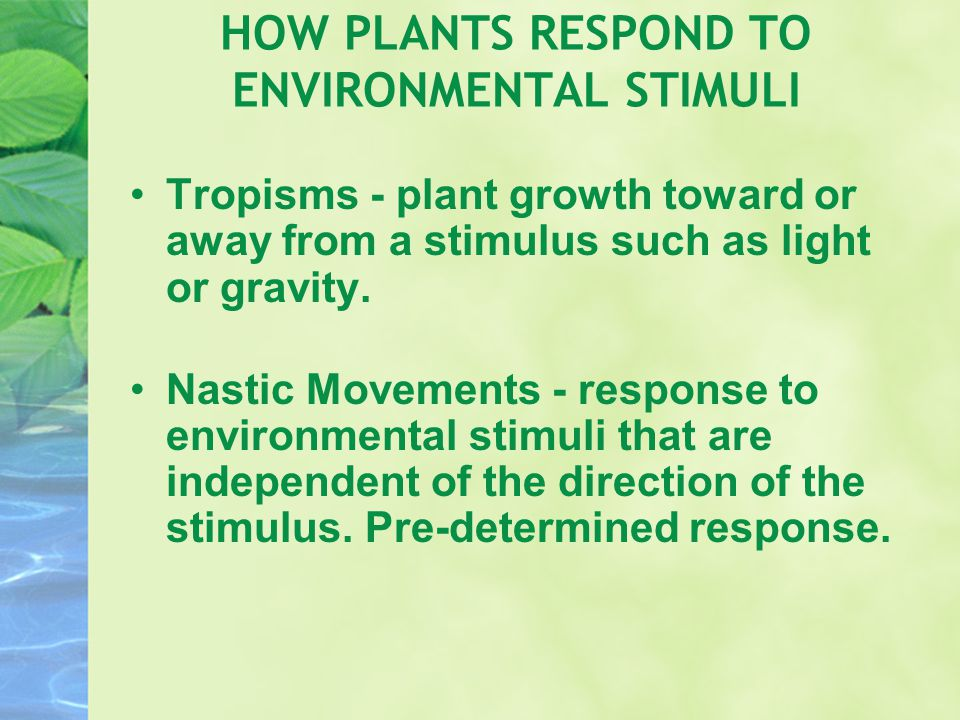 HOW PLANTS RESPOND TO ENVIRONMENTAL STIMULI