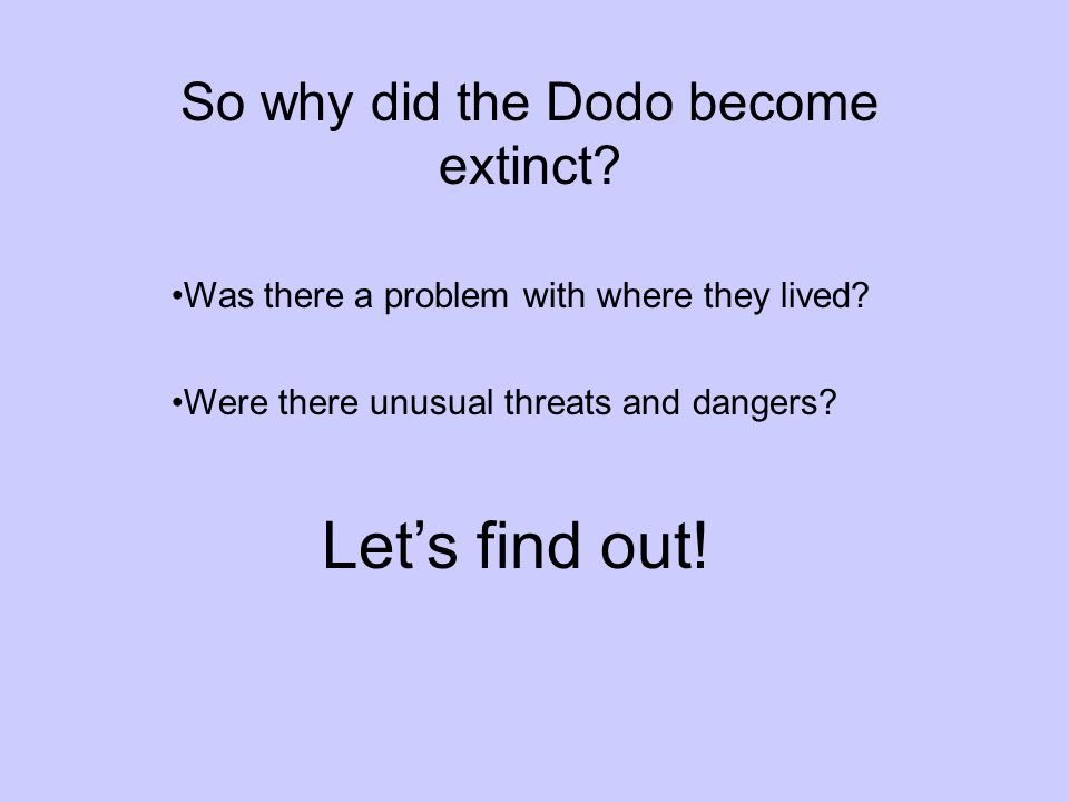 So why did the Dodo become extinct