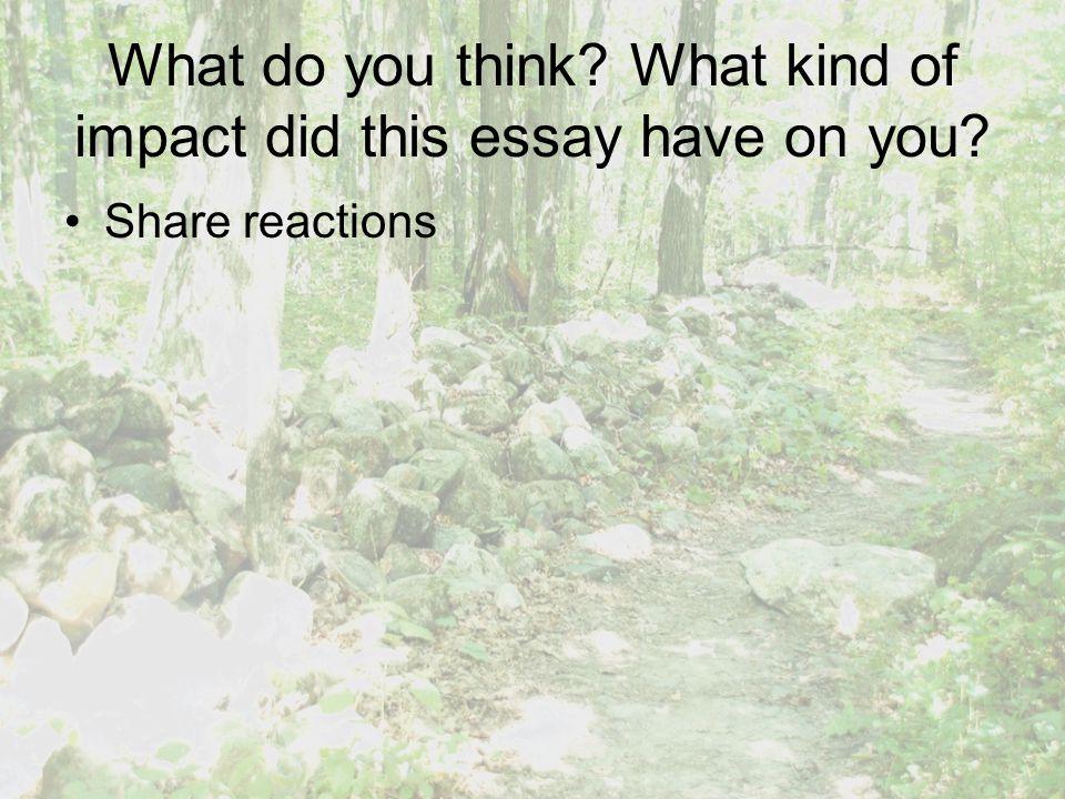 emerson self reliance essay 2