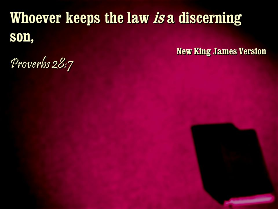 Whoever keeps the law is a discerning son,