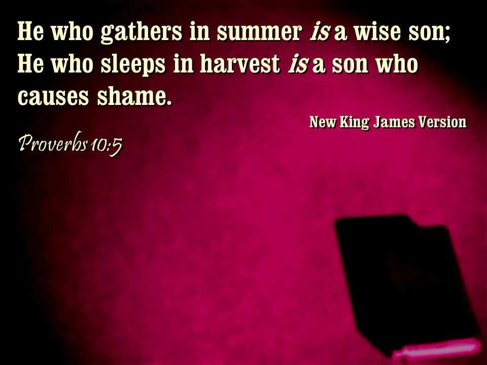 He who gathers in summer is a wise son; He who sleeps in harvest is a son who causes shame.