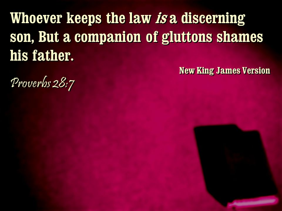 Whoever keeps the law is a discerning son, But a companion of gluttons shames his father.