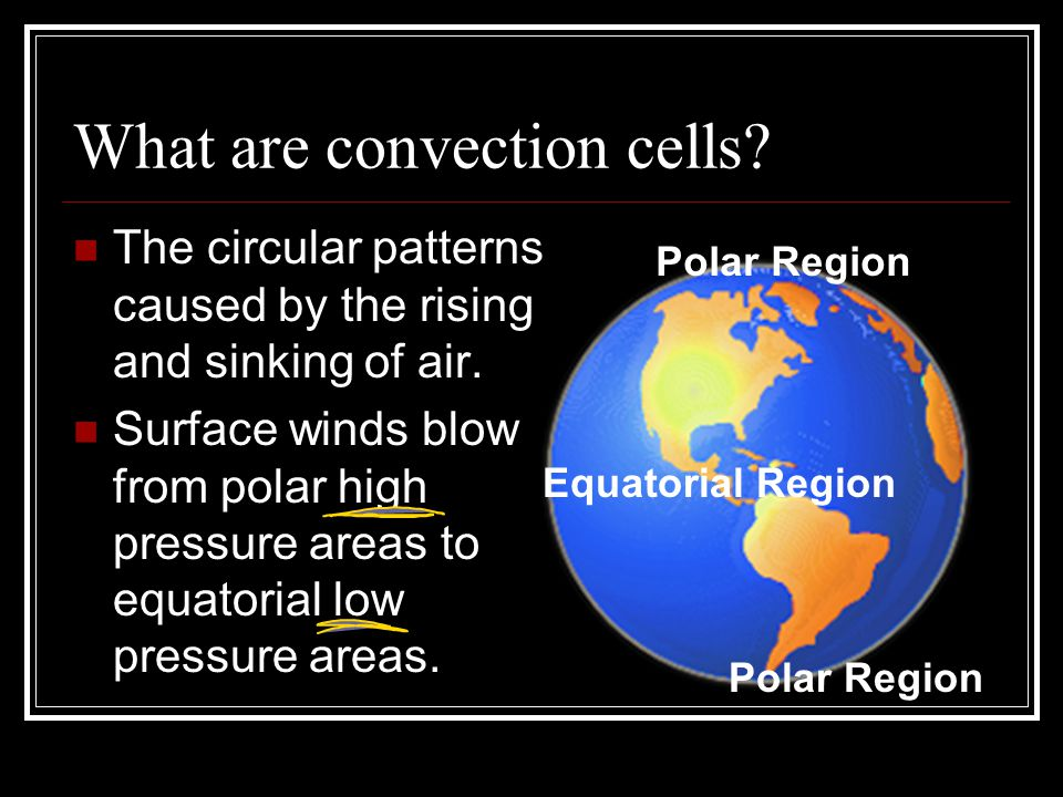 What are convection cells