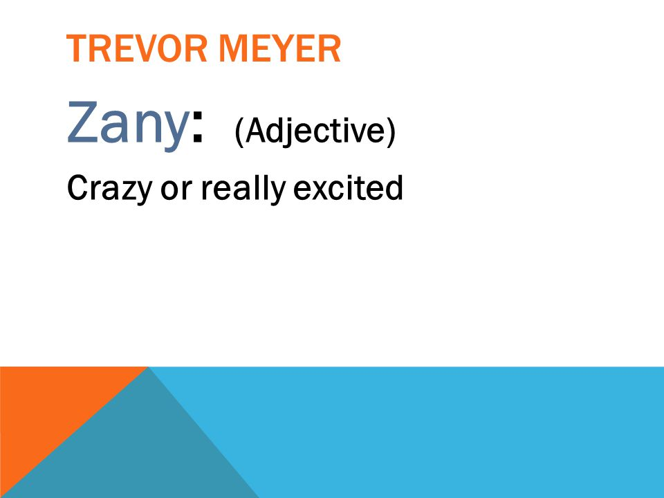 Trevor Meyer Zany: (Adjective) Crazy or really excited
