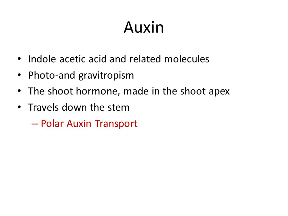 Auxin Indole acetic acid and related molecules Photo-and gravitropism