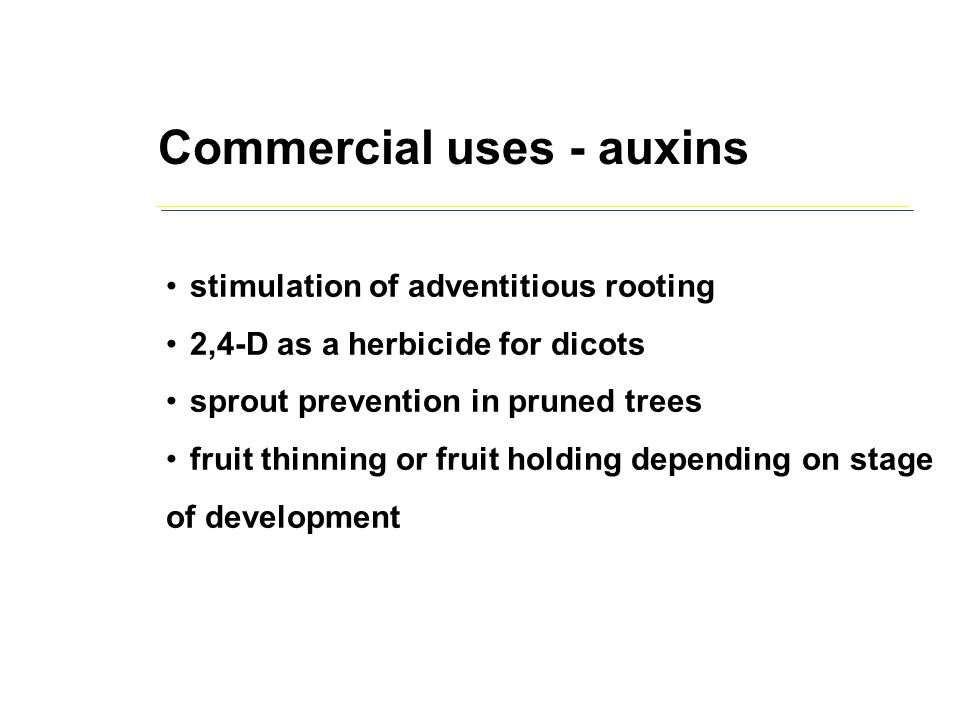 Commercial uses - auxins