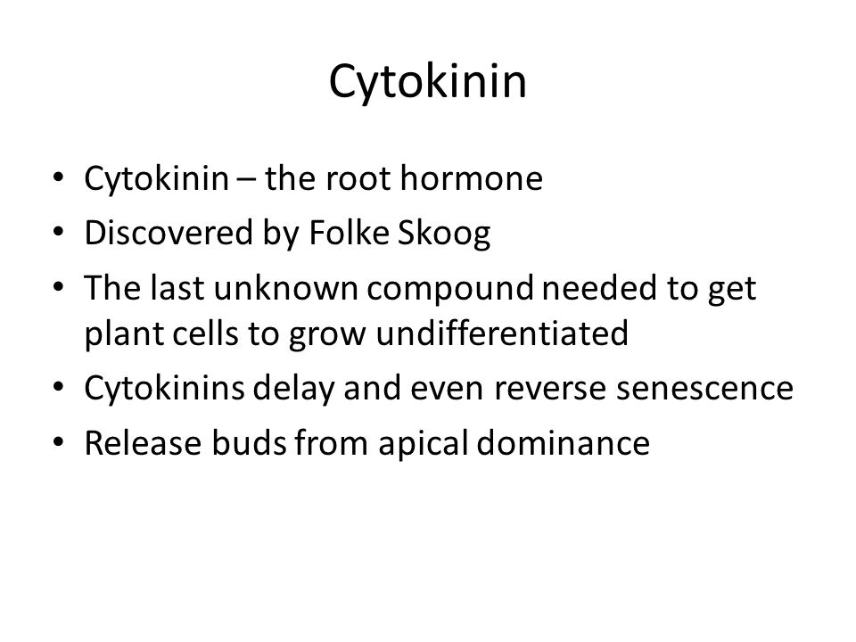 Cytokinin Cytokinin – the root hormone Discovered by Folke Skoog