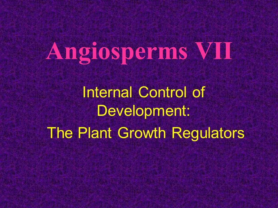 Internal Control of Development: The Plant Growth Regulators