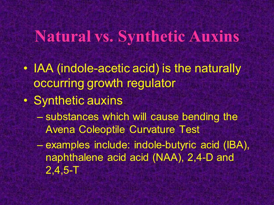 Natural vs. Synthetic Auxins