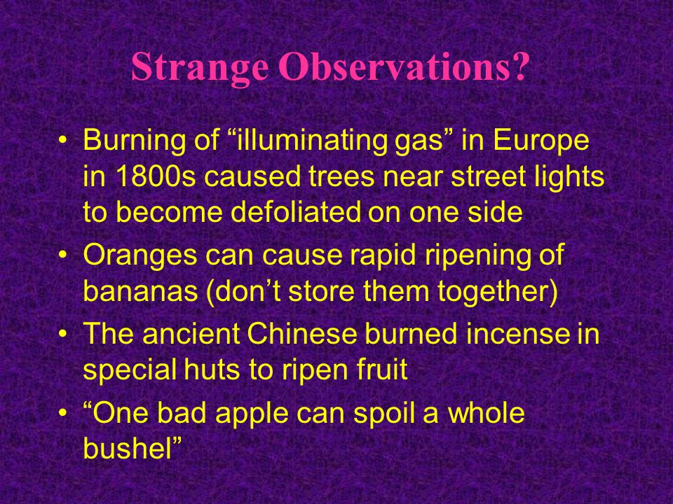 Strange Observations Burning of illuminating gas in Europe in 1800s caused trees near street lights to become defoliated on one side.