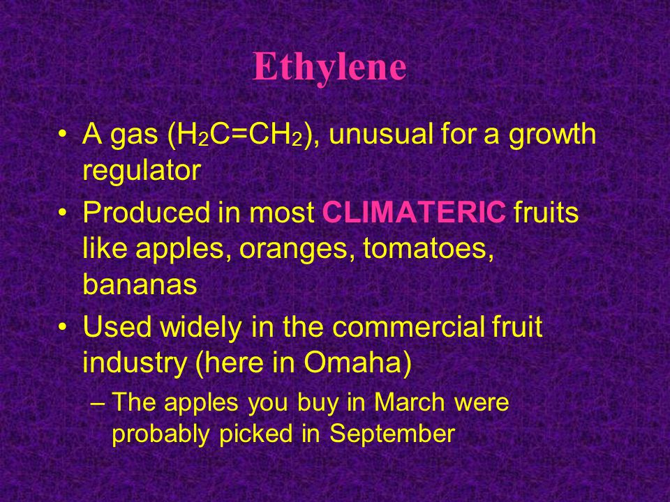 Ethylene A gas (H2C=CH2), unusual for a growth regulator