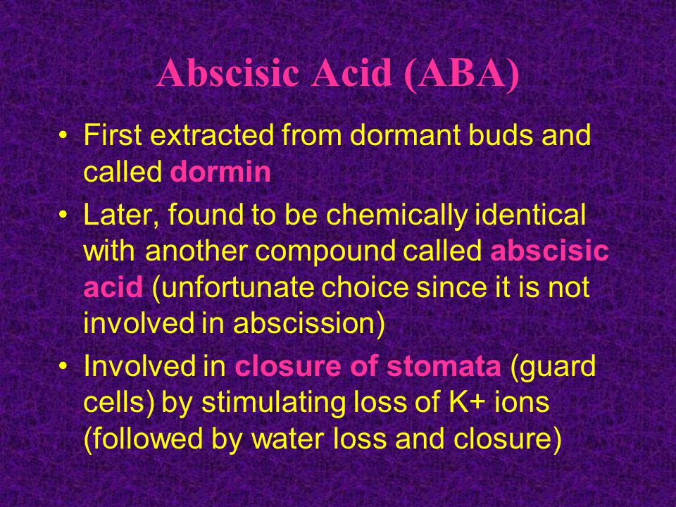 Abscisic Acid (ABA) First extracted from dormant buds and called dormin.