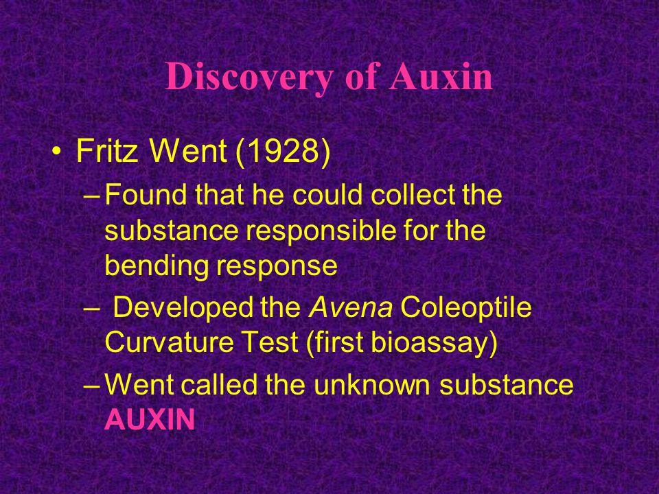 Discovery of Auxin Fritz Went (1928)
