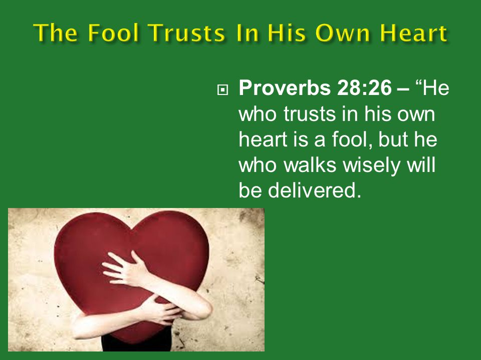The Fool Trusts In His Own Heart