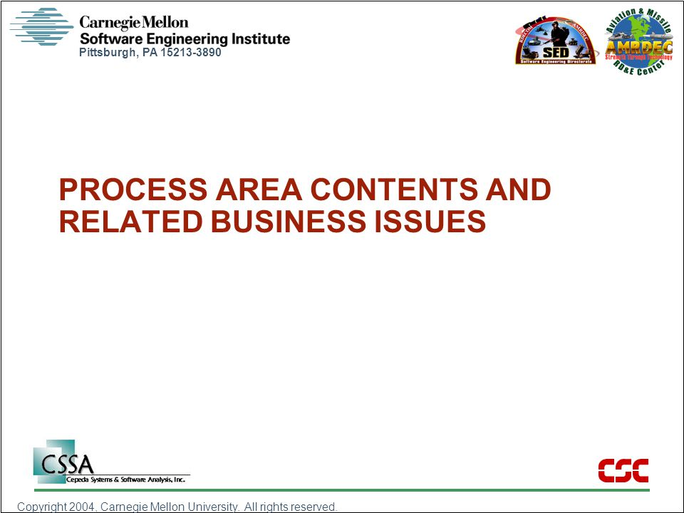 PROCESS AREA CONTENTS AND RELATED BUSINESS ISSUES