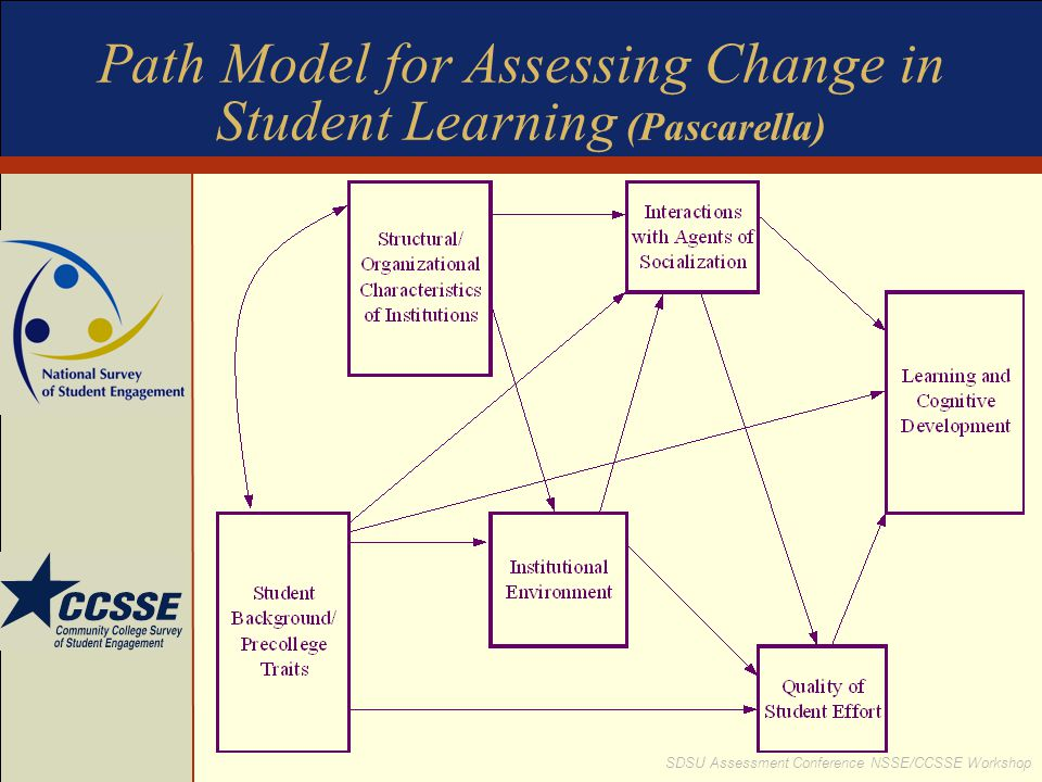 Path Model for Assessing Change in Student Learning (Pascarella)