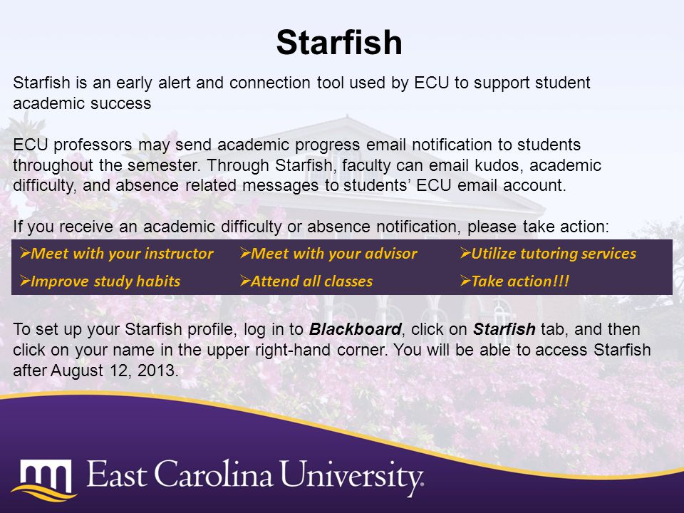 Starfish Starfish is an early alert and connection tool used by ECU to support student academic success.
