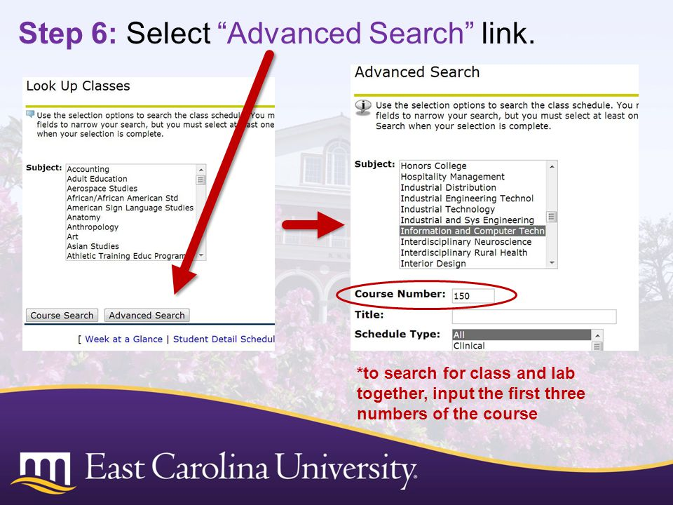 Step 6: Select Advanced Search link.