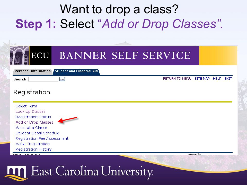 Want to drop a class Step 1: Select Add or Drop Classes .