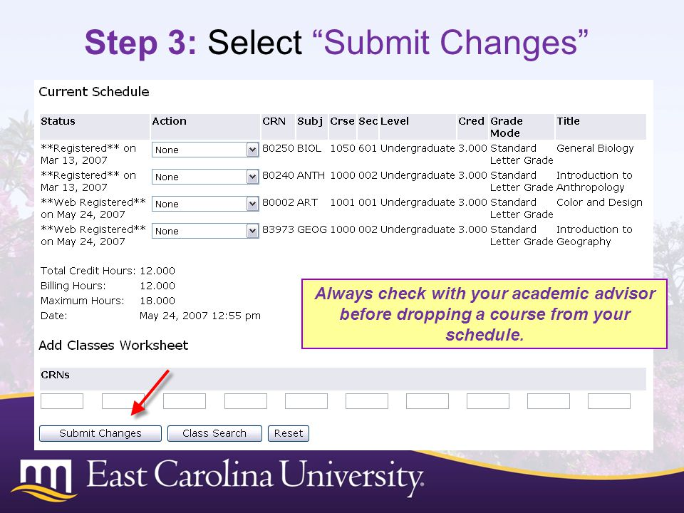 Step 3: Select Submit Changes
